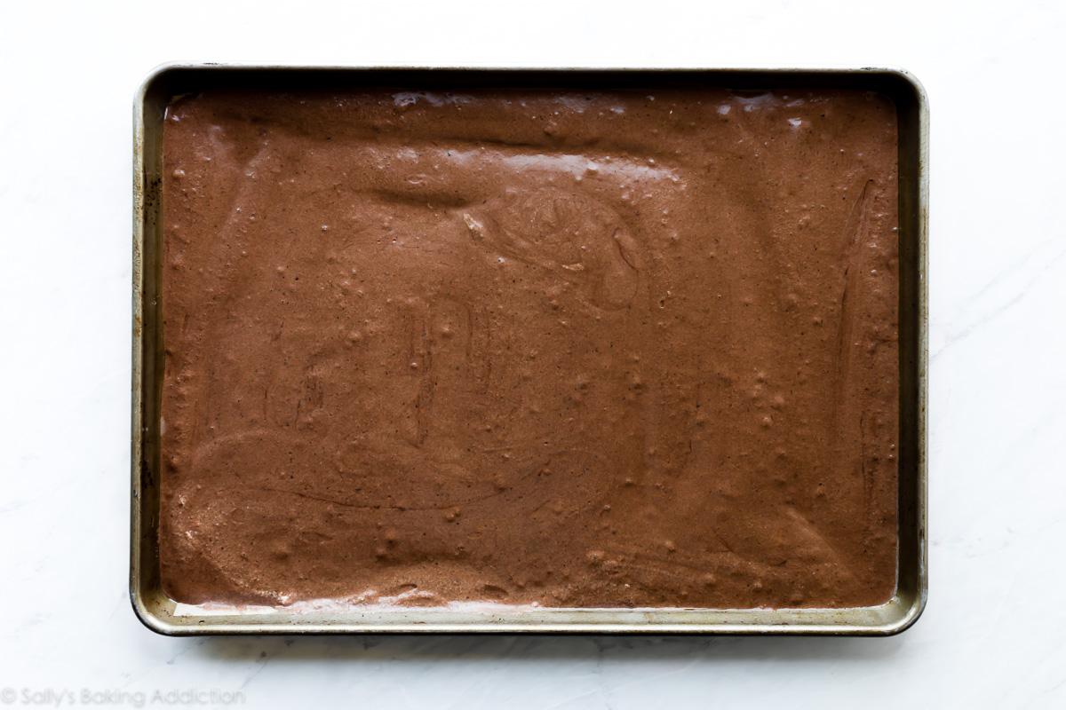 Pâte à gâteau roulée au chocolat suisse