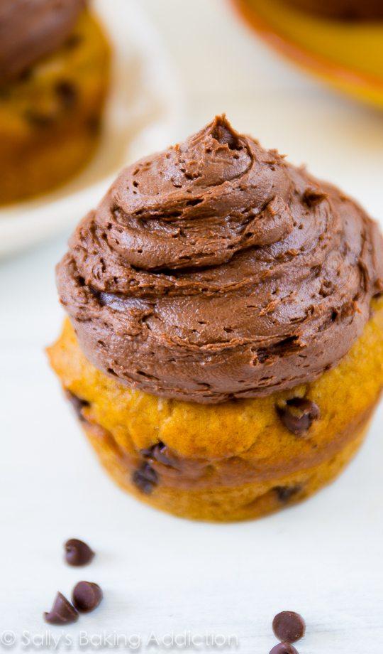 Un cupcake aux pépites de chocolat et à la citrouille, super moelleux et garni d'un riche glaçage au chocolat noir! Recette sur sallysbakingaddiction.com