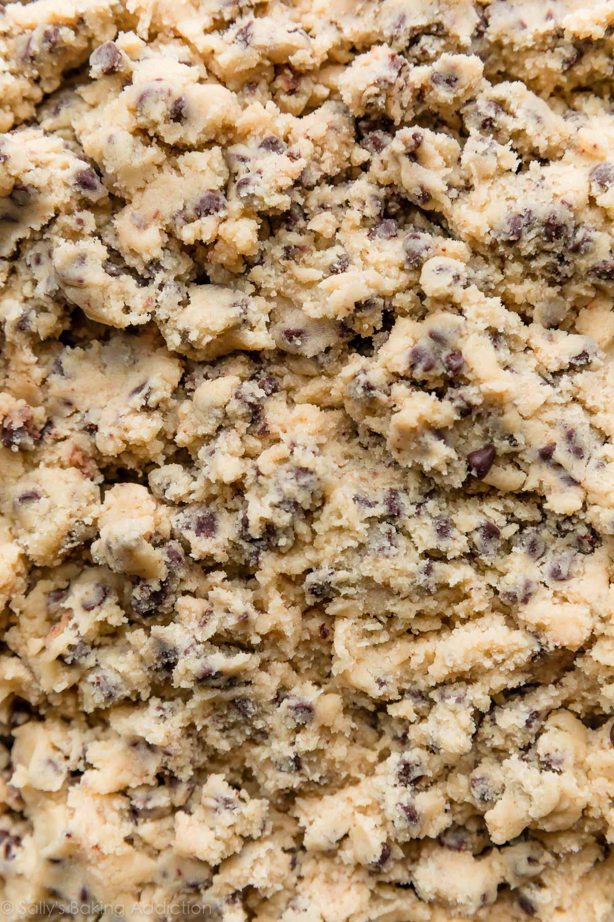 pâte à biscuits aux pépites de chocolat» largeur=