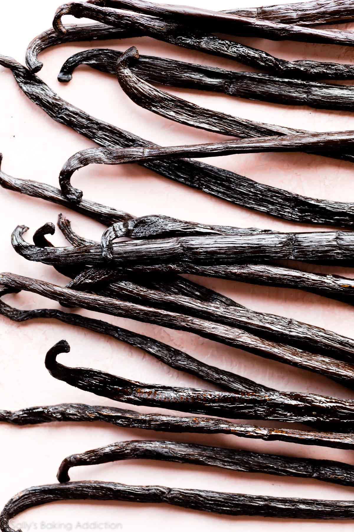 graines de vanille