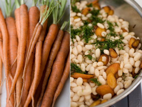 Petites carottes et haricots blancs