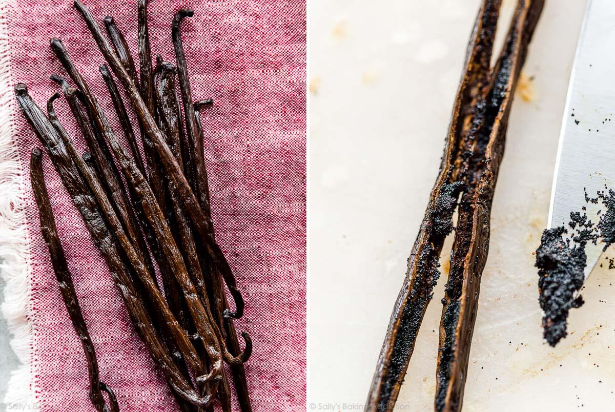 gousses et graines de vanille