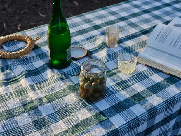 Articles sur une table de pique-nique avec nappe à carreaux vert
